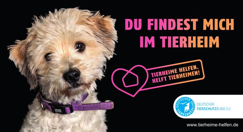 Deutscher Tierschutzbund e.V.