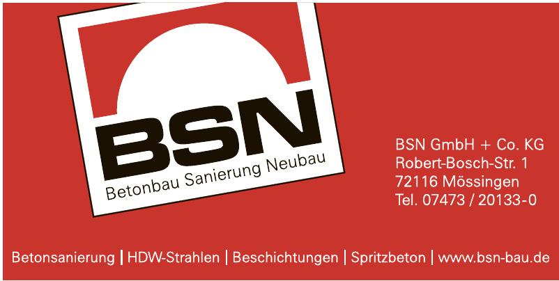 BSN GmbH+Co. KG