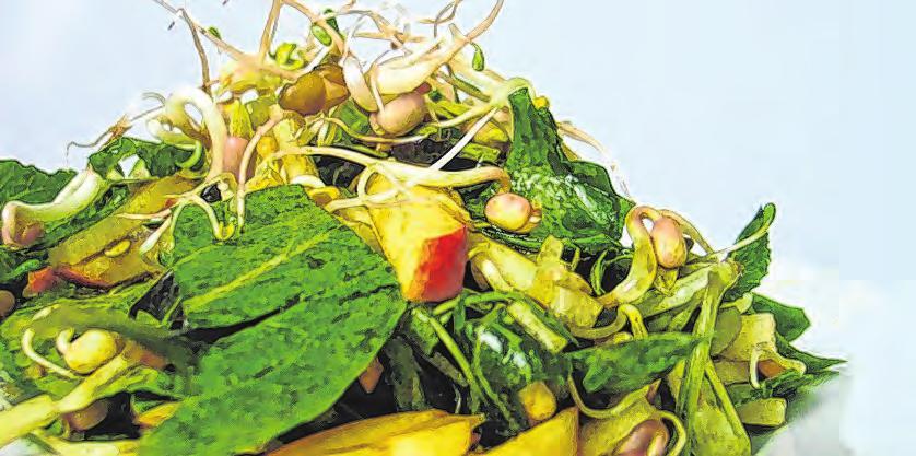 Wintersalat aus regionalen Lebensmitteln Foto: G.Homolka/Die Umweltberatung