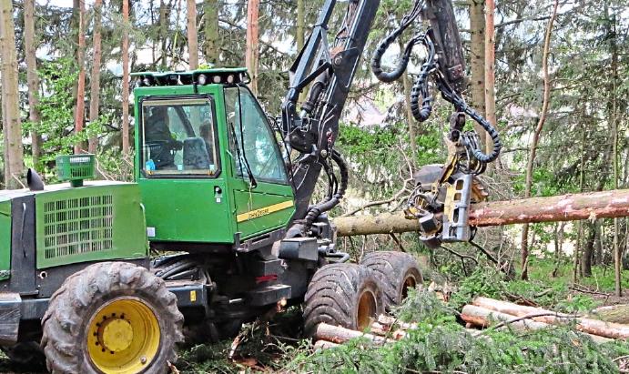 Wald und Forst - Ingolstadt und Neuburg - Riedenburg