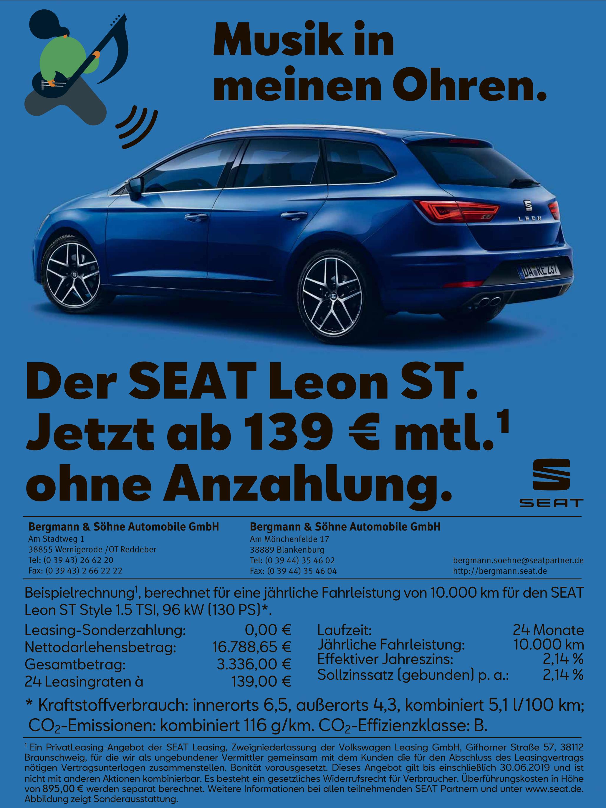 Bergmann & Söhne Automobile GmbH