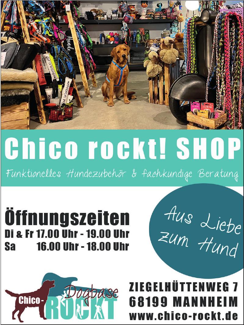 Chico-Rockt.de