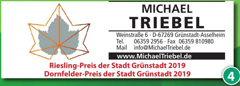 Michael Triebel