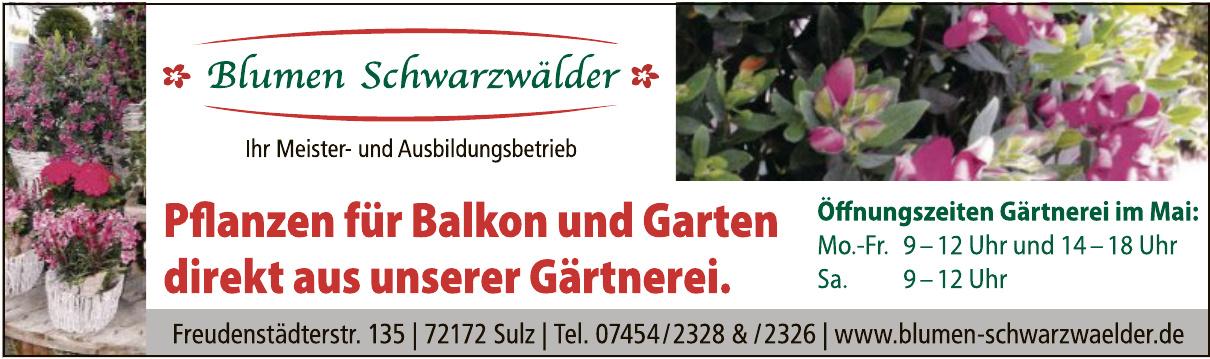 Blumen Schwarzwälder GbR.