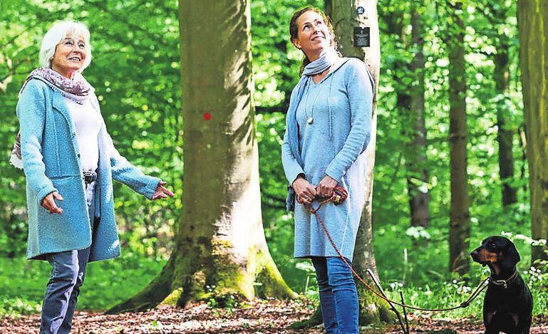 Viele Hinterbliebene besuchen die Verstorbenen bei einem Spaziergang durch den Wald. Foto: djd/FriedWald GmbH