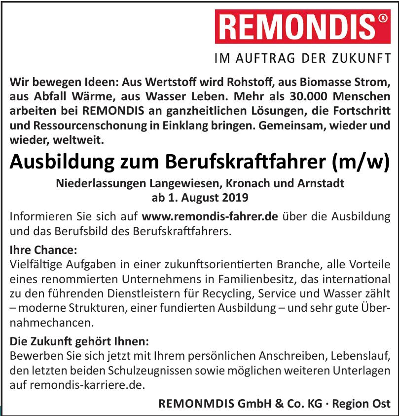 Remonmdis GmbH & Co. KG