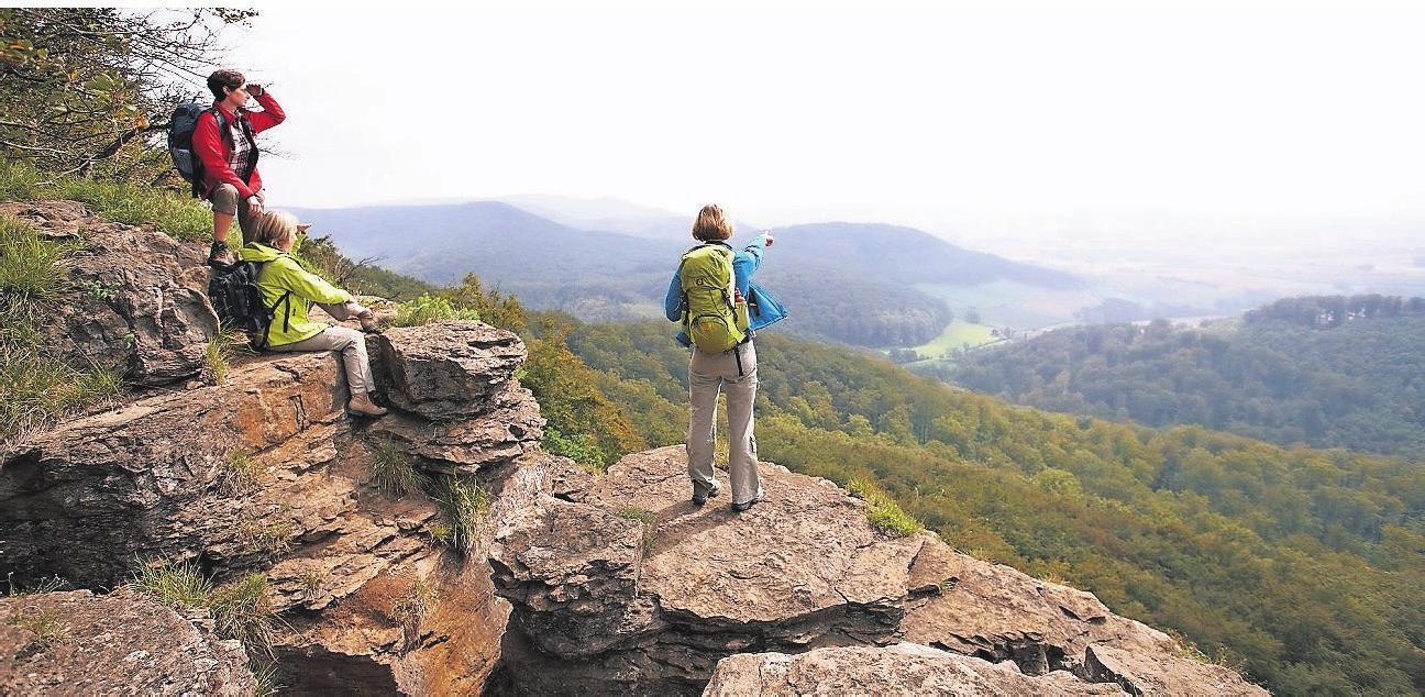 Eindrucksvolle Aussichten können Wanderer an den Hohenstein Klippen genießen.