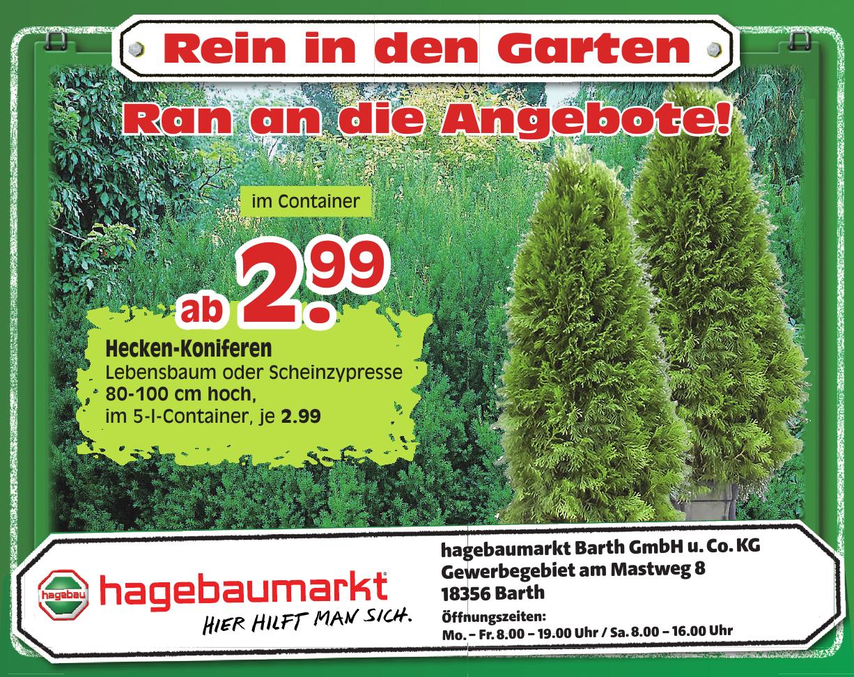 Hagebaumarkt Barth Gmbh & Co. KG