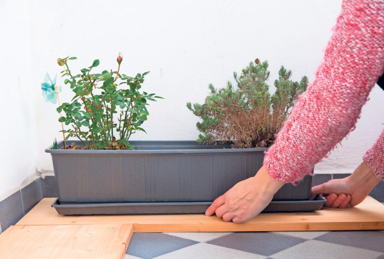 PFLANZENKÜBEL sollten im Winter draußen nicht ohne Schutz auf dem Boden stehen – Bretter können die Kälte von unten abhalten. Fotos: Florian Schuh/dpa-tmn
