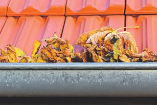 Bild: C. Schubbel - stock.adobe.com