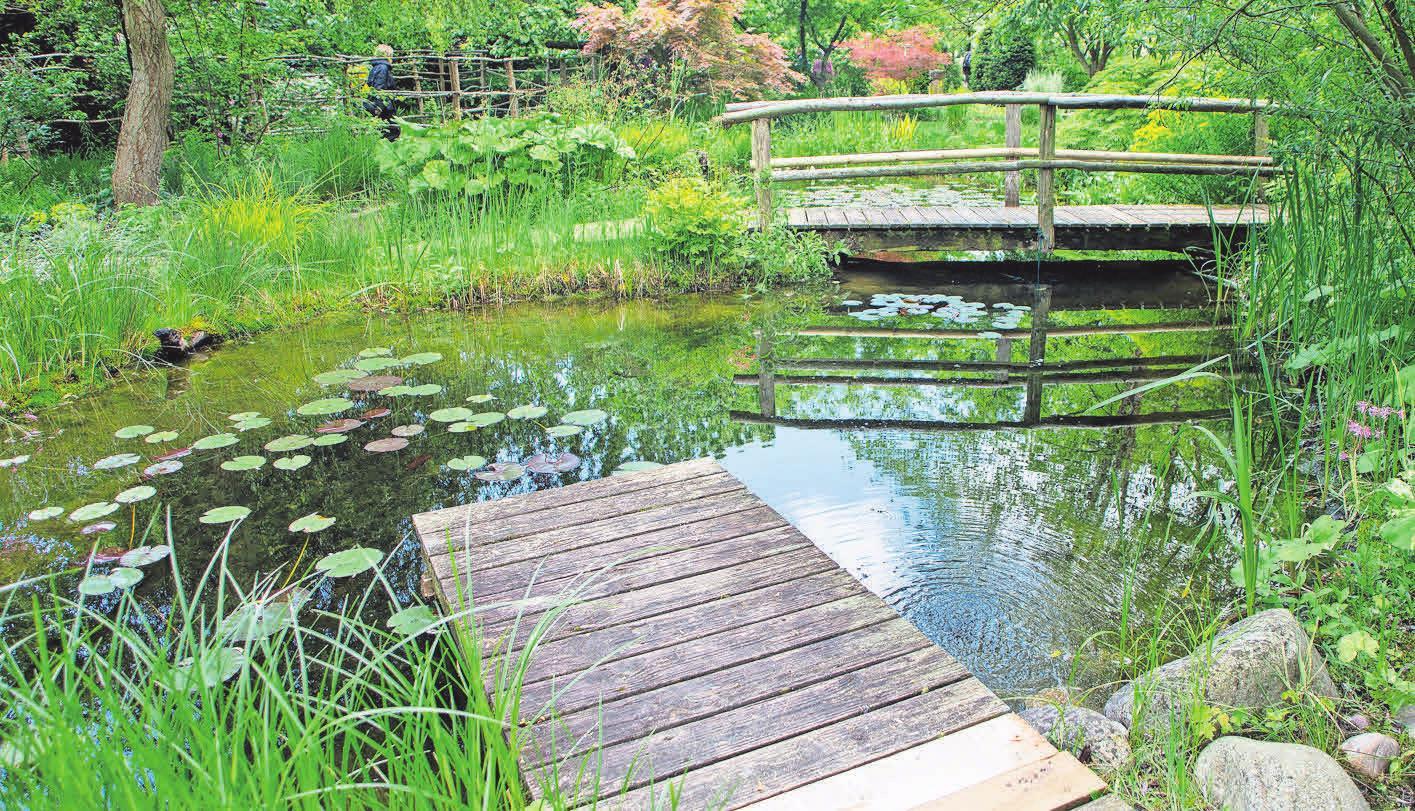 Mit einem Steg und einer Brücke setzen Gartenfans Akzente. Foto: Rainer Sturm, pixelio.de