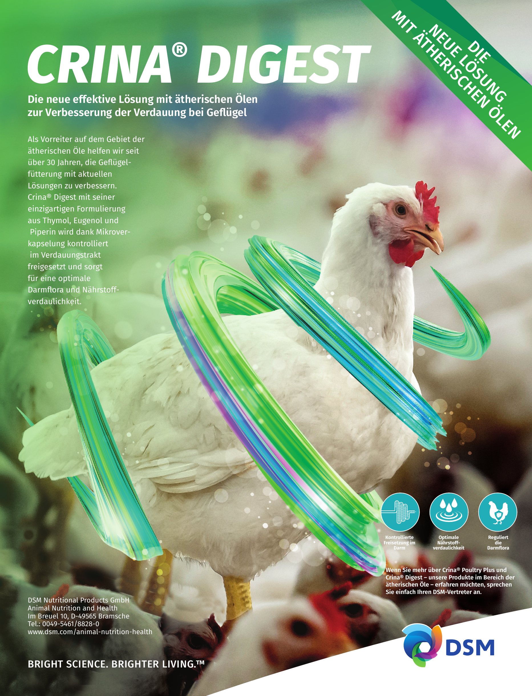 DSM Nutritional Products GmbH - Animal Nutrition and Health