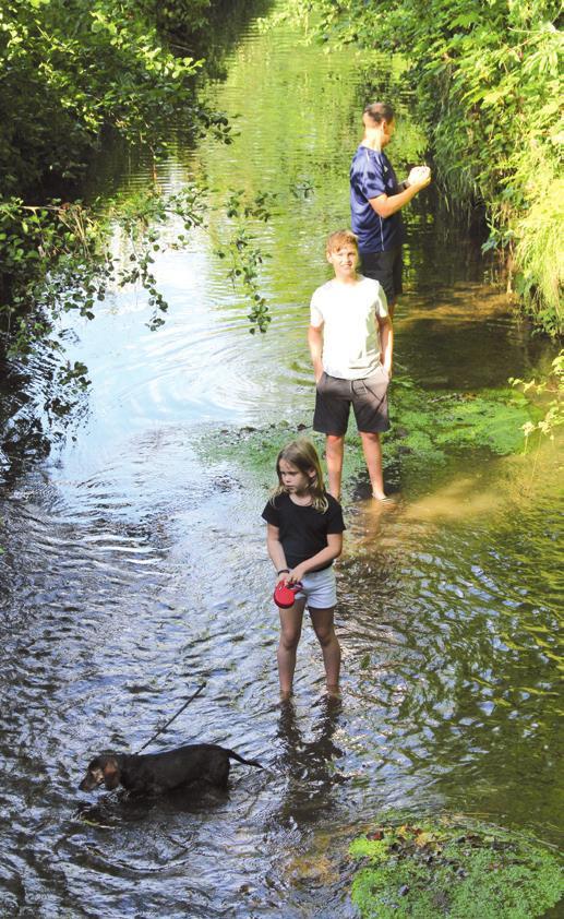 Erfrischendes Waten auf kiesigem Grund im kühlen Wasser der Hamel ist an heißen Tagen ein Genuss.
