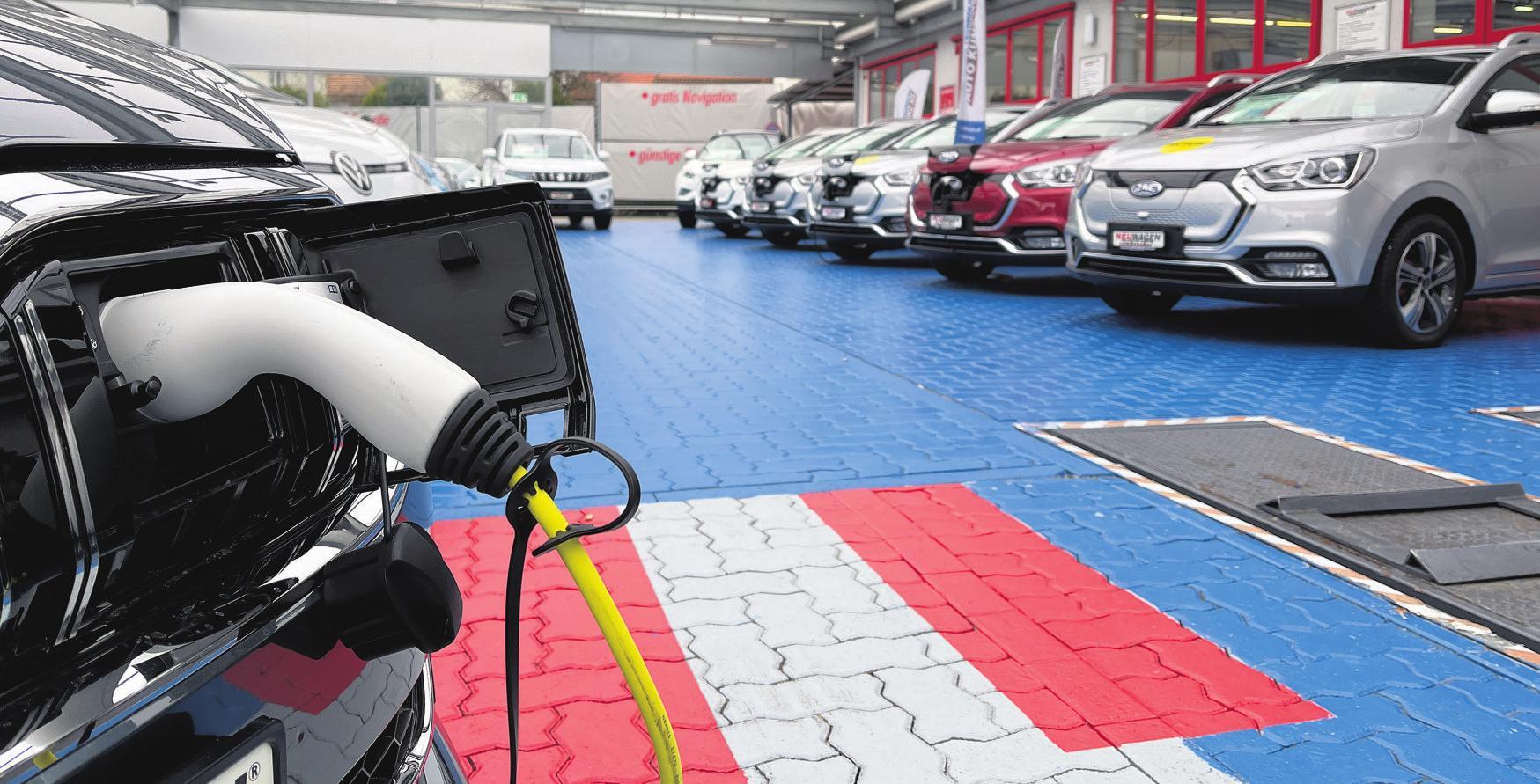 Steckdosenautos: Von Mild-Hybrid über Voll- und Plug-in-Hybrid bis hin zum Vollelektrofahrzeug ist alles vertreten und kann getestet und miteinander verglichen werden. Foto: zVg.