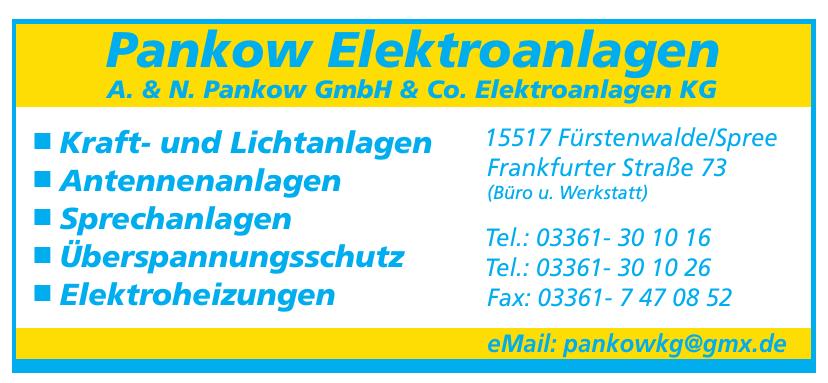 Elektro-Pankow