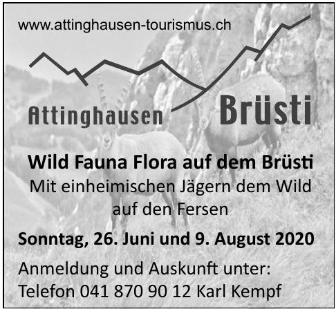 Attinghausen Brüsti