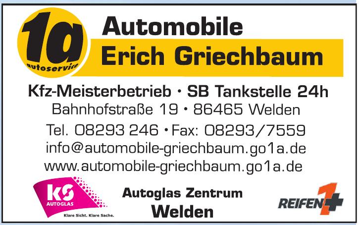 Automobile Erich Briechbaum