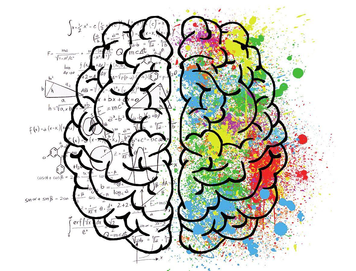 Das Gehirn kann durch neuronales Training gesund und fit gehalten werden. Fotos: Pixabay.com