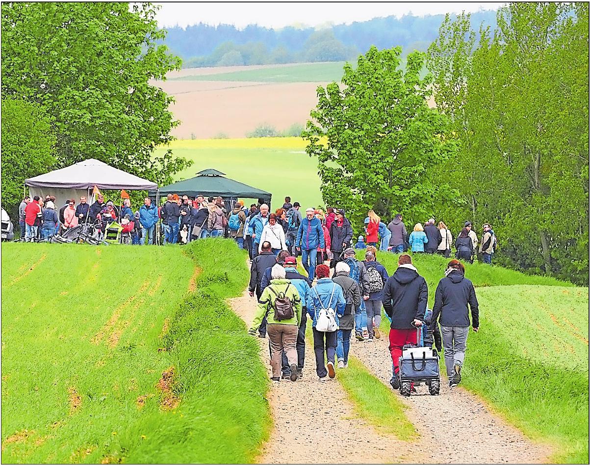 Hinauf zur Wattweiler Aussicht: Am 1. Mai lockt die kulinarische Blütenwanderung. FOTO:MOSCHEL