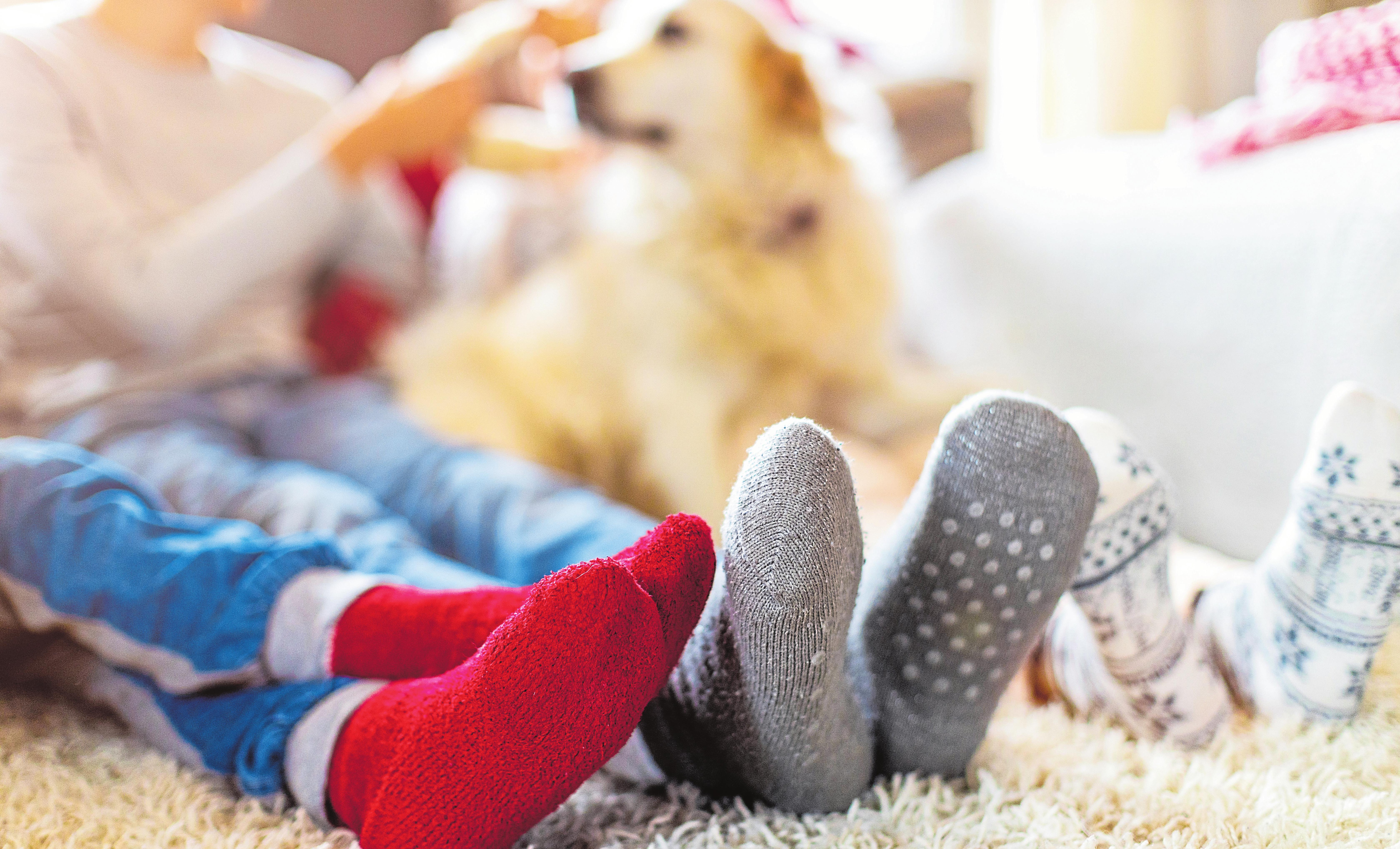 Fotos: Shutterstock