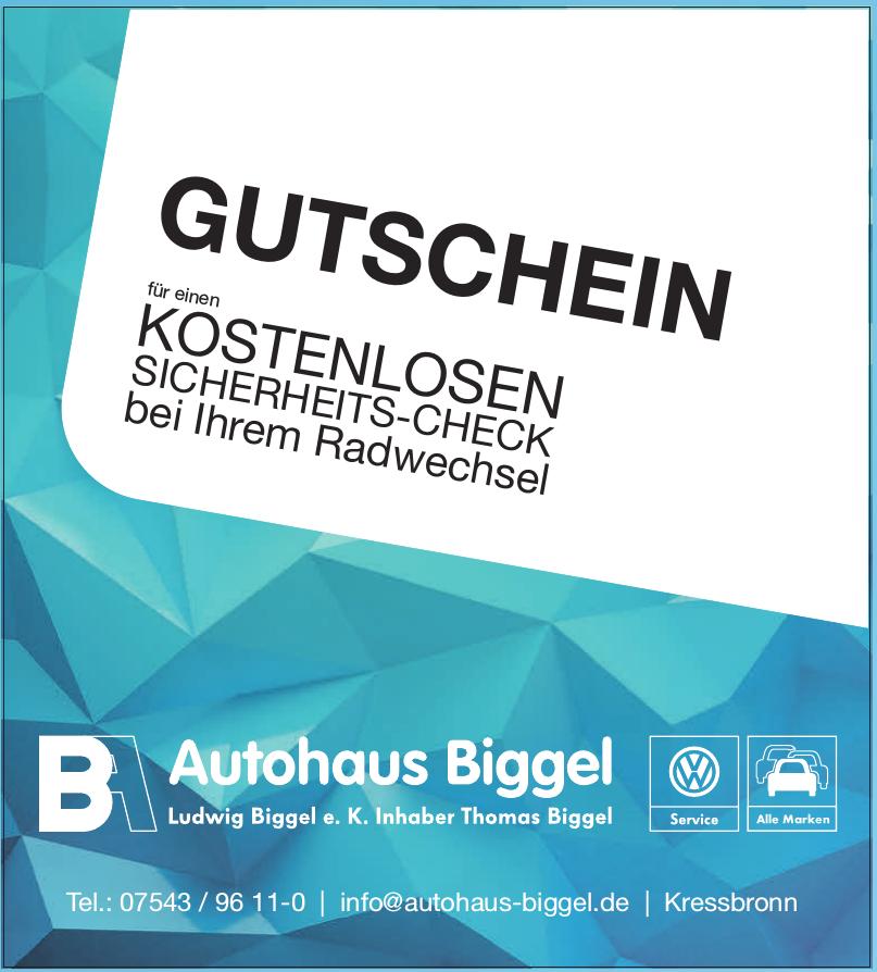 Autohaus Biggel