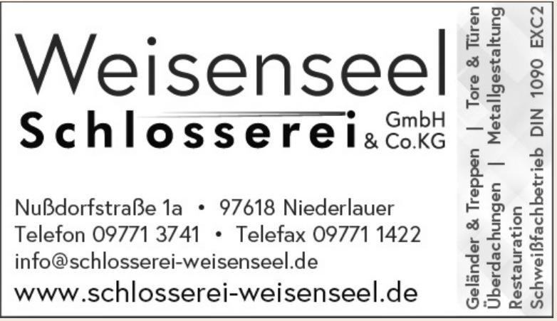 Weinsenseel Schlosserei GmbH & Co. KG