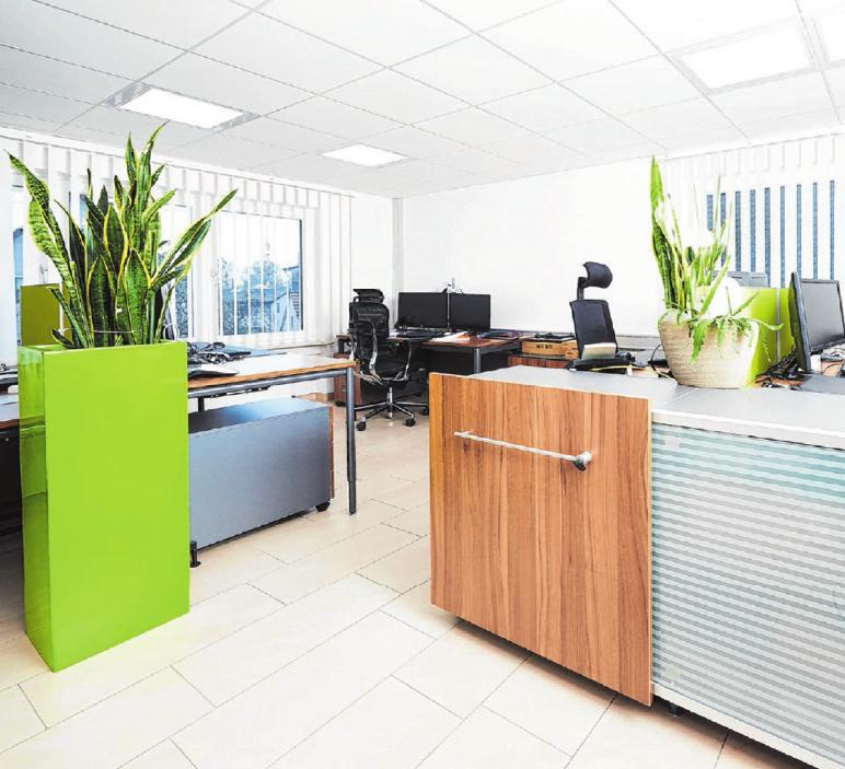 Modernst eingerichtete Büroräume bieten großzügigen Platz für insgesamt zehn Mitarbeiter. Foto: privat