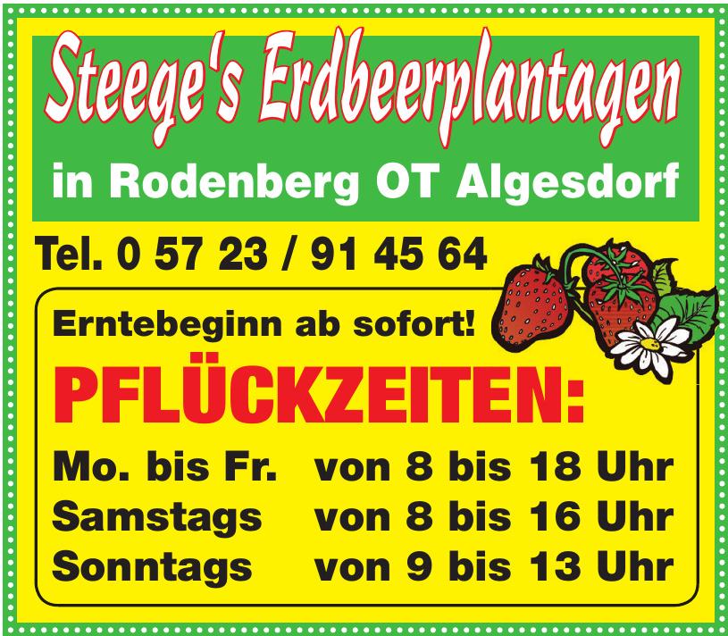 Steege's Erdbeerplantagen