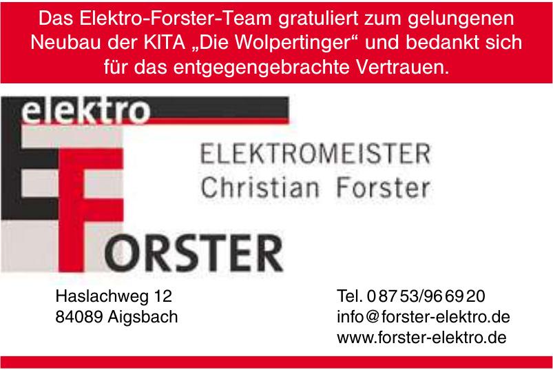 Elektromeister Christian Forster