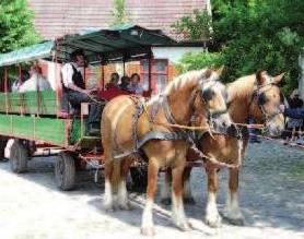 Zum traditionellen Trittauer Mühlenmarkt zeigen am Pfingstwochenende rund 150 Aussteller Kunsthandwerk und Gartenaccessoires auf dem Gelände der 350 Jahre alten Wassermühle