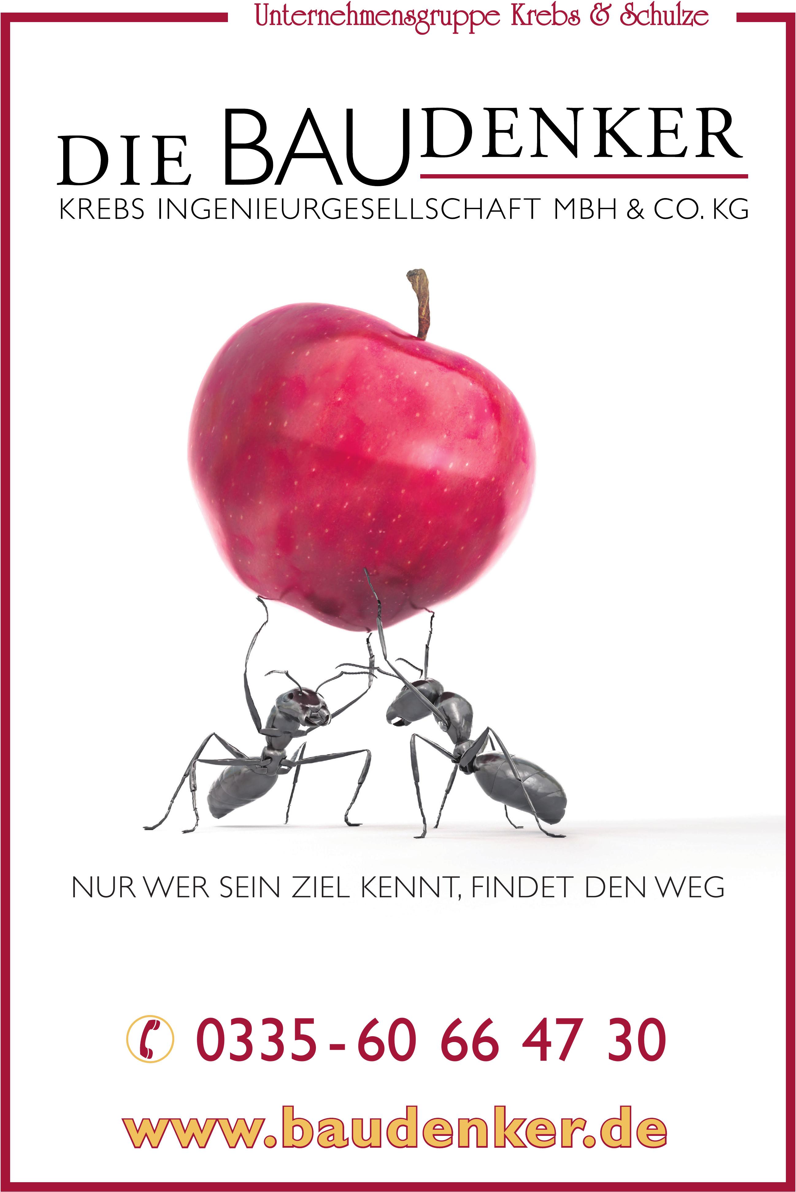 Die Baudenker Krebs Ingnieurgesellschaft mbH & Co.KG