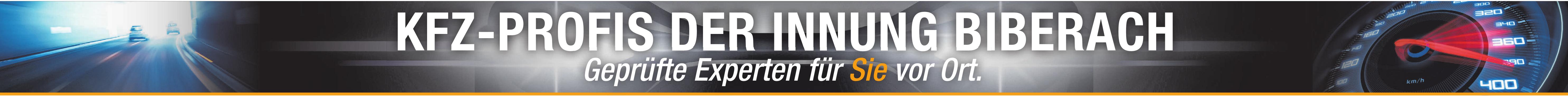 Martin Vöhringer ist neuer Obermeister der Kfz-Innung Biberach Image 1