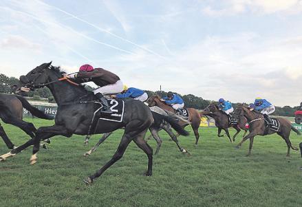 Die Jockeys treiben die Pferde zu Höchstleistungen. Bild: Seher