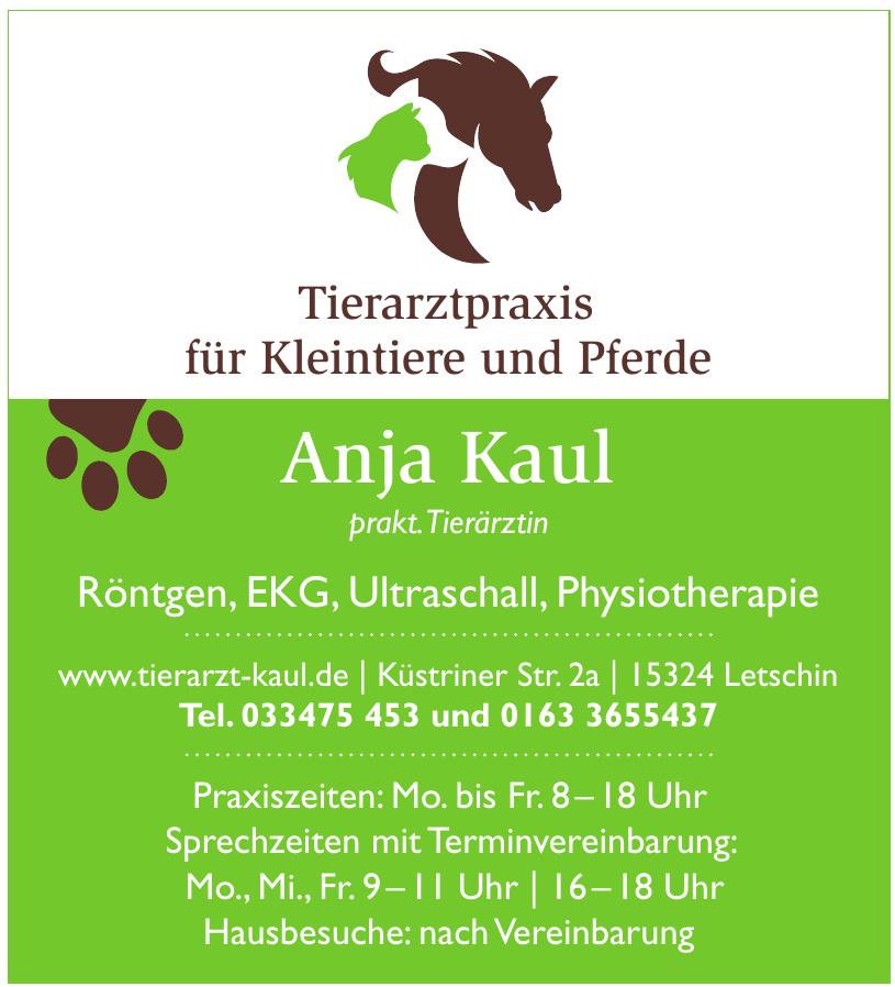 Tierarztpraxis für Kleintiere und Pferde Anja Kaul prakt. Tierärztin