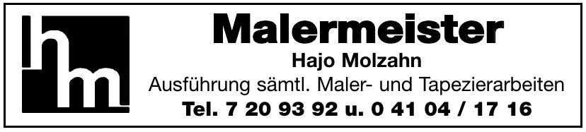 Malermeister Hajo Molzahn
