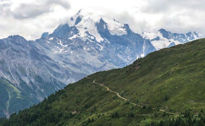 Blick auf König Ortler (3905 Meter), den höchsten Berg Südtirols. Foto: Tourismusverein Prad