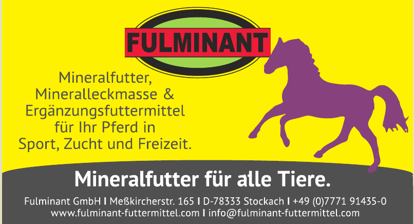 Fulminant GmbH