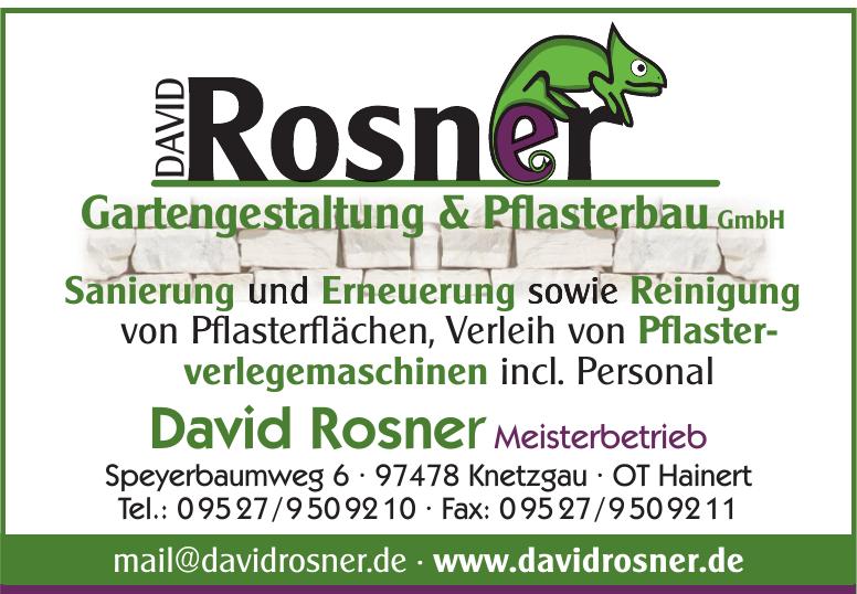 David Rosner