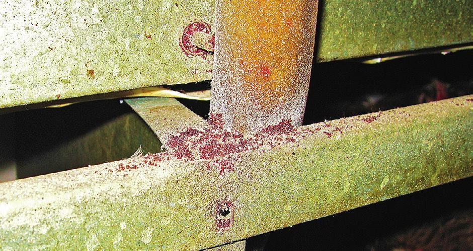 Um schwer zugängliche Verstecke der Milben zu erreichen, wird das Produkt versprüht.
