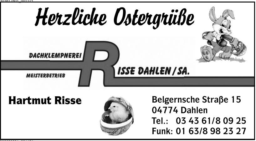 Dachklempnerei Meisterbetrieb Risse Dahlen/Sa.