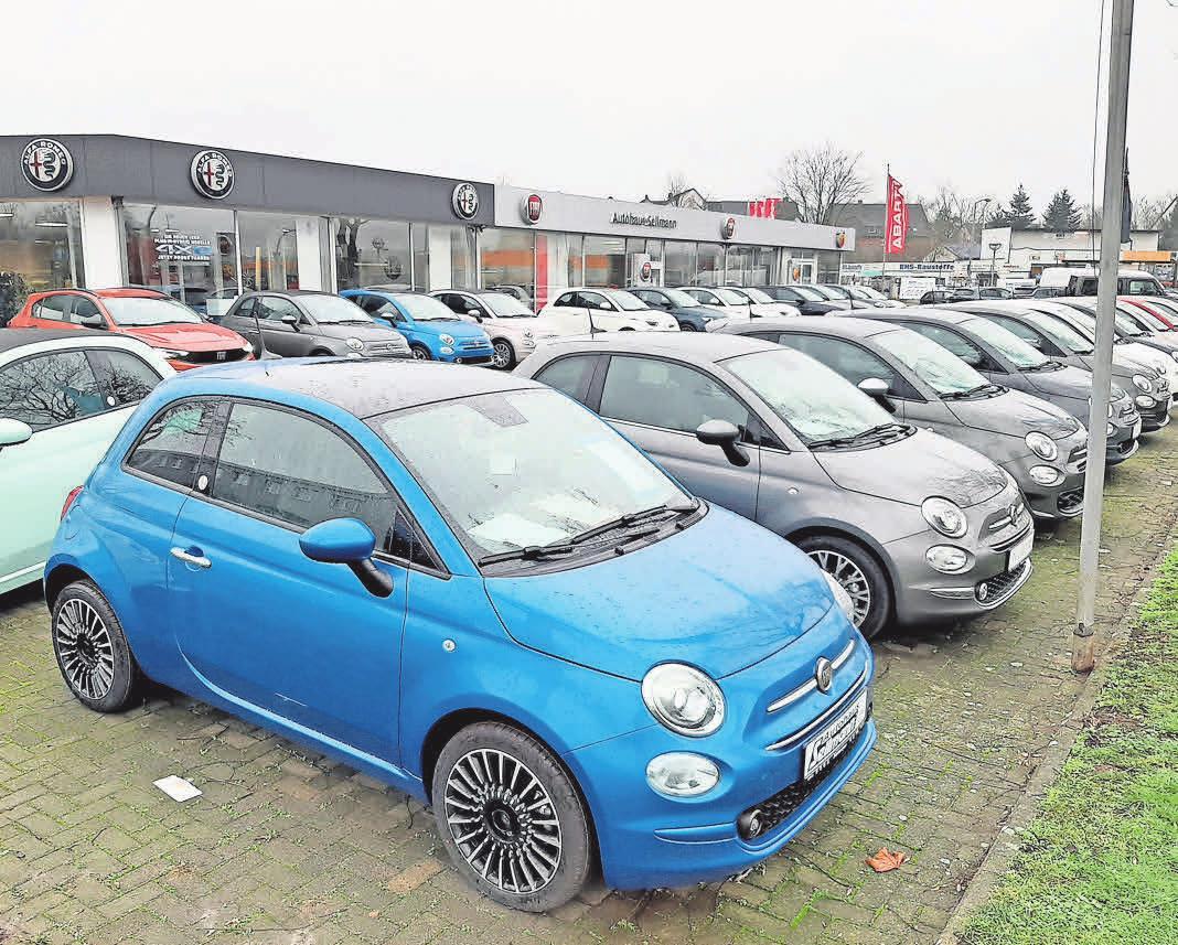 Auf dem Außengelände des Autohauses Sellmann kann man unter anderem den Fiat 500 anschauen.