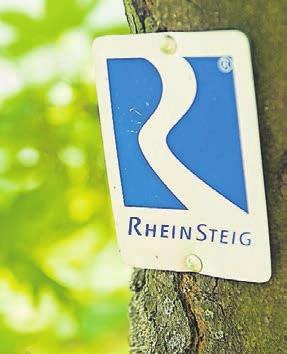 Gut markiert: der Rhein-Steig.