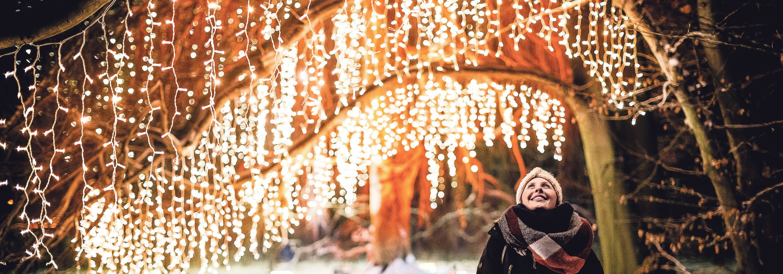 Der Christmas Garden Dresden ist täglich von 16:30 bis 22:00 Uhr geöffnet. Eintrittskarten sind für stundenweise gestaffelte Einlasszeiten erhältlich