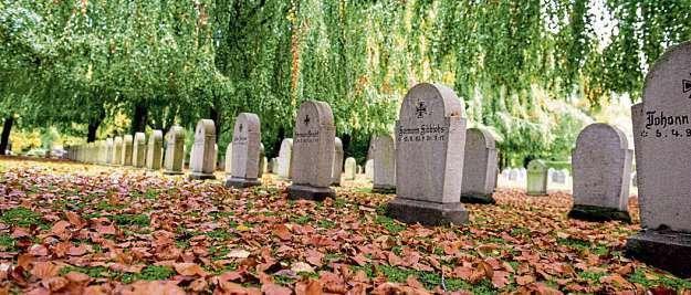 Der Nordfriedhof im Herbst.FOTO: LANDESHAUPTSTADT KIEL/BODO QUANTE