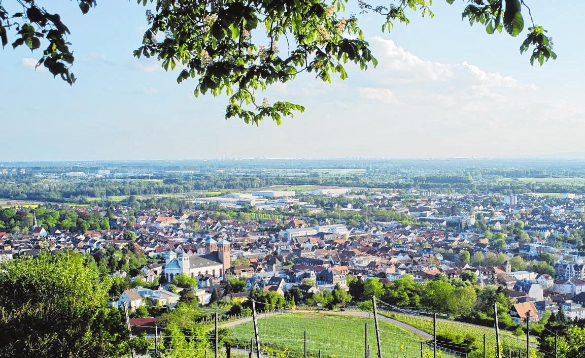 Die Lieblings-Joggingstrecke der Webers führt über den Kirchberg – von dort genießen sie regelmäßig den Blick auf die Stadt. | Bild: Thomas Neu