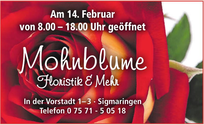 Mohnblume Floristik & Mehr