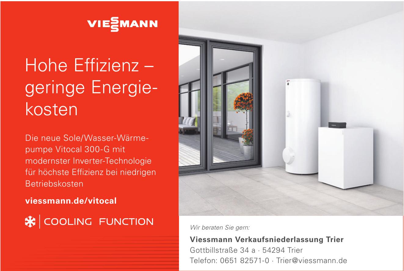 Viessmann Verkaufsniederlassung Trier
