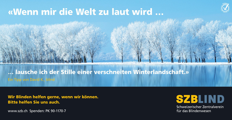 SZBLIND Schweizerischer Zentralverein für das Blindenwesen