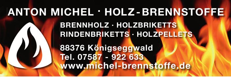 Anton MIchel, Holz-Brennstoffe