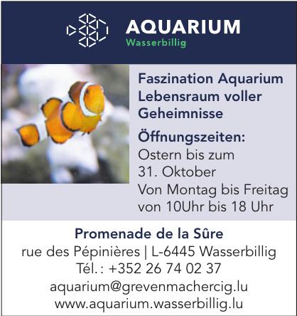 Aquarium Wasserbillig